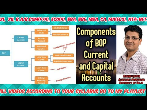 Components Of The Balance Of Payments |components Of Currents  And Capital Accounts