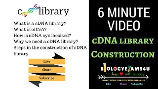 cDNA Library Construction Steps and Advantages (6 minutes)