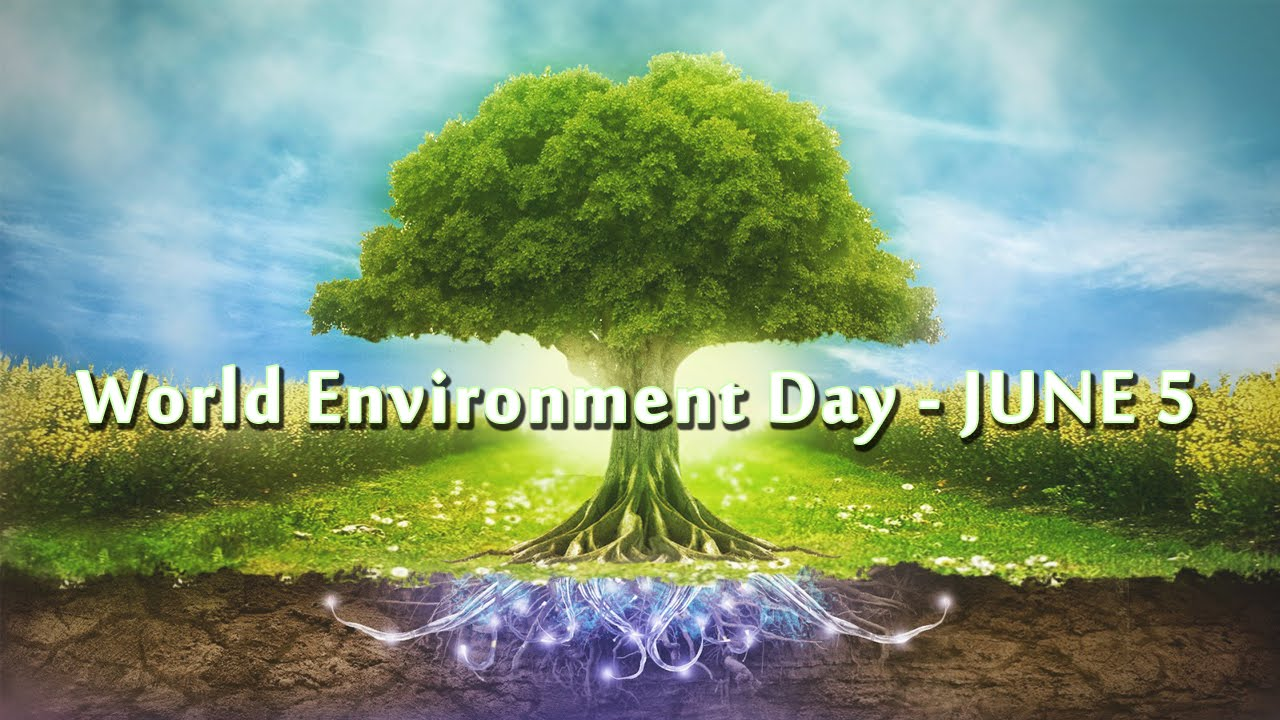 environmental cleanliness
