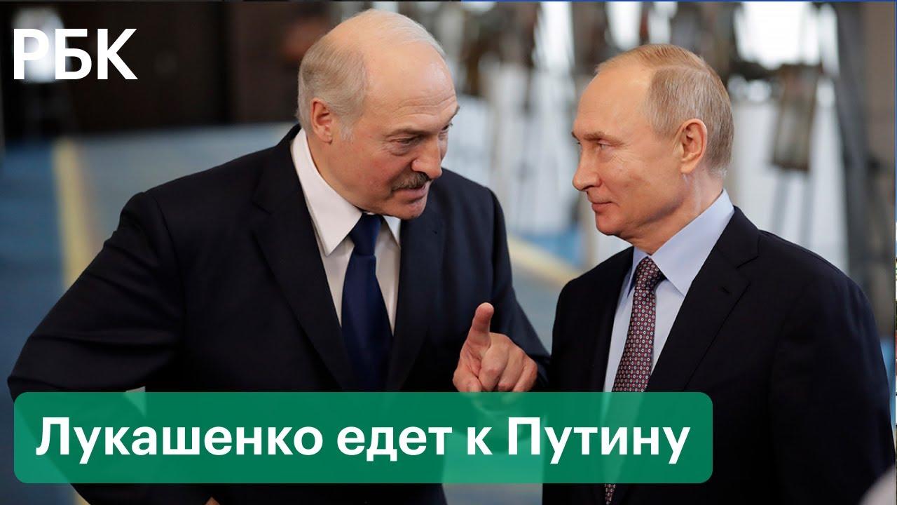 Новая встреча Путина и Лукашенко. Что обсудят президенты России и Белоруссии