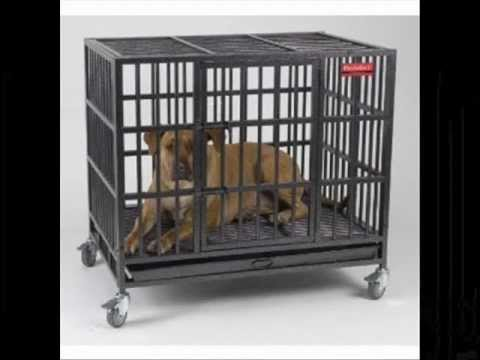 indestructible dog crate indestructible crate large crates in all sizes 29348