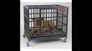 Indestructible Dog Crate, Large Dog Crates In All Sizes Available