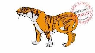 Как нарисовать карандашом тигра из мультфильма про Маугли(83 486 рублей за 22 дня! Новая уникальная система заработка! http://glopages.ru/affiliate/1905293 НАЖИМАЙ прямо сейчас и УЗНАЕШЬ..., 2014-07-10T14:01:53.000Z)