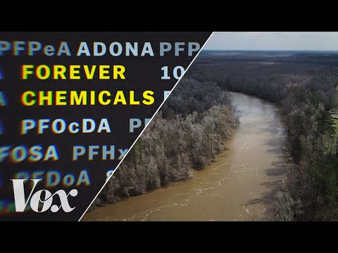 "How ""forever chemicals"" polluted America's water"