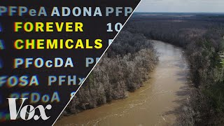 How forever chemicals polluted Americas water