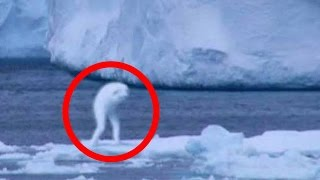 5 Most Mysterious Unknown Creatures Caught on Camera