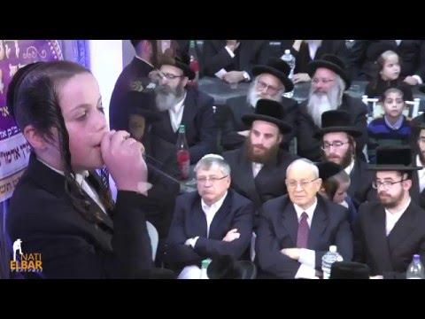 מקהלת מלכות, אבריימי לונגר וילד הפלא דוד פולק | Malchus Choir - Avremi Lunger & Dovid Pollack