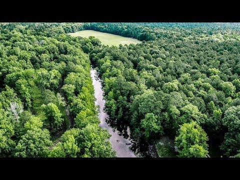 Nix Lower Bayou, 345± Acre Hunting & Fishing Retreat | East Texas
