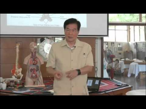 Mantak Chia CNT V Life Pulse Massage 1 Master Pulse