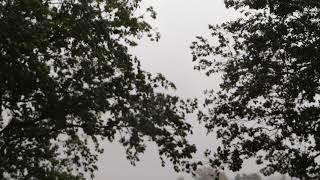 2017/10/23 雨風おさまったかと思ったらまた強くなりました‼ ※台風動画...