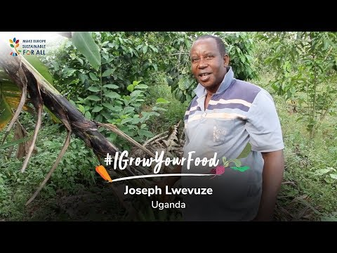#IGrowYourFood - Meet Joseph Lwevuze, an organic farmer from Uganda