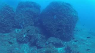 SCUBA Diving El Toro Mallorca