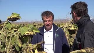 Успешно земеделие - броят от 01.11.2018