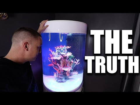 EXPOSING THE TRUTH ABOUT MY SALTWATER AQUARIUM - THE KING OF DIY