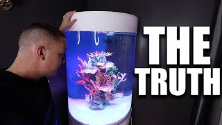 exposing-the-truth-about-my-saltwater-aquarium-the-king-of-diy