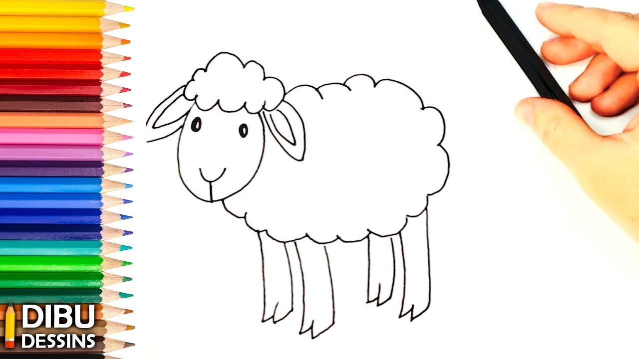 Coloriage Facile Mouton.Comment Dessiner Un Mouton Dessin De Mouton Youtube