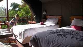 Teniqua Treetops Eco Resort Sedgefield Garden route South Africa