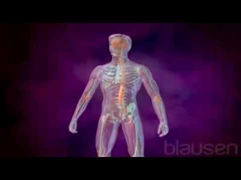 Клещевой боррелиоз болезнь Лайма