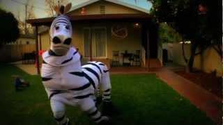Substanced Zebra