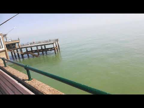 Deal Beach, Kent || Omg !! Big Fish Caught In Deal Pier, Kent || Fishing Spot In Kent ||
