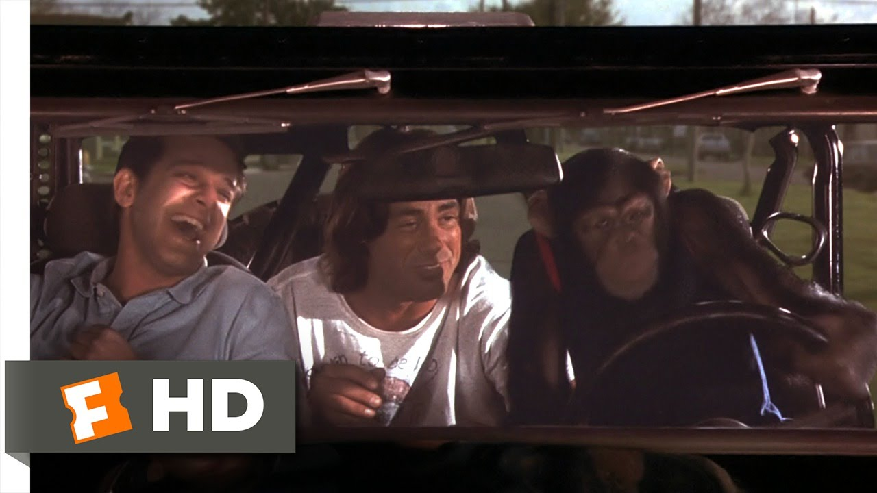 Download Grandma's Boy (5/5) Movie CLIP - Drive, Monkey, Drive (2006) HD