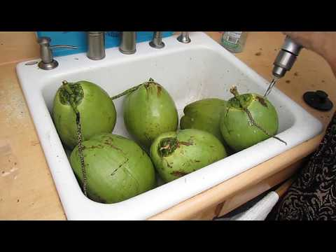 How to open a green coconut with a drill