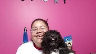 Meet My Puppy | Furry friend tag