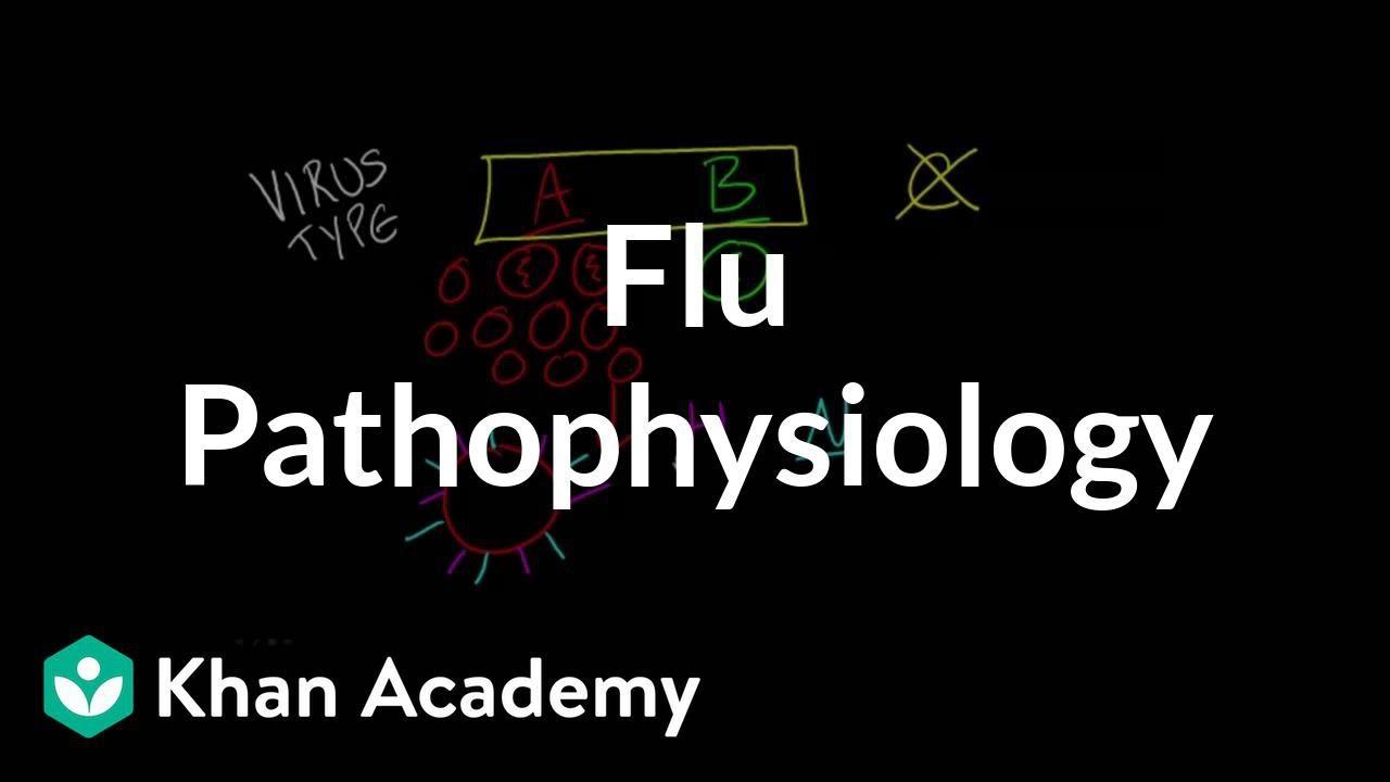 Flu Pathophysiology (video) | Influenza | Khan Academy