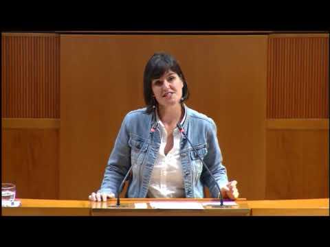 Elena Allué. Sucesiones y usufructo vidual