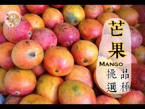 【夏】芒果的挑選方法