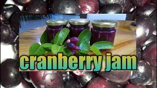 How to make cranḃerry jam? #cranberry #jam