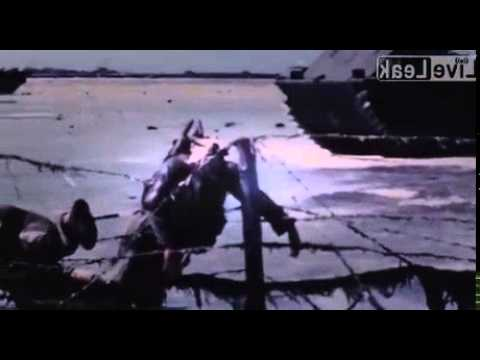 Brutal Pacific War Footage *Graphic*