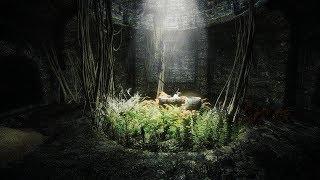 Skyrim Association Evolution 2.5 - Сложность Легенда