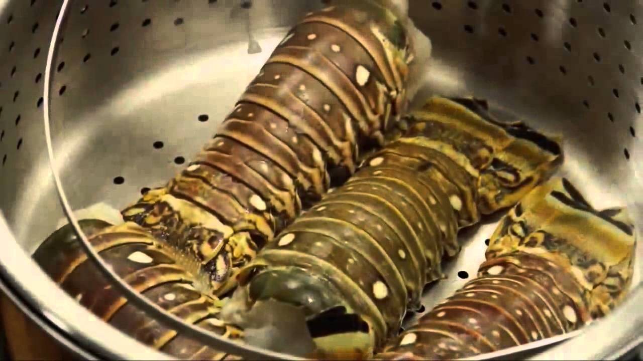 How to Boil Lobster | Baked Lobster Tails | Lobster Tail Recipe | Lobster Tail Recipes - YouTube