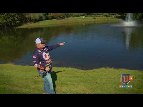 who-needs-a-boat?-bass-fishing-ponds-from-the-bank