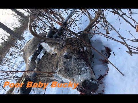 2017 Manitoba Whitetail Deer Hunting