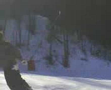 mel snow 2008