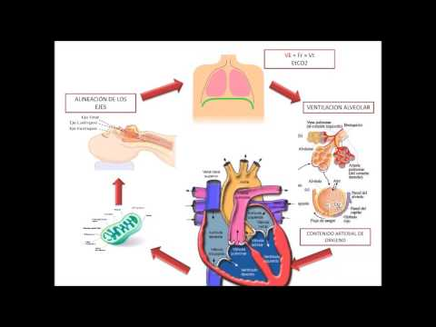 METS - Equivalente Metabólico