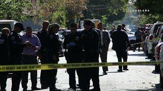 Brooklyn: Man Shot in Broad Daylight