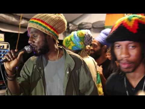 Chronixx - Perfect Tree (Live at Kingston Dub Club)