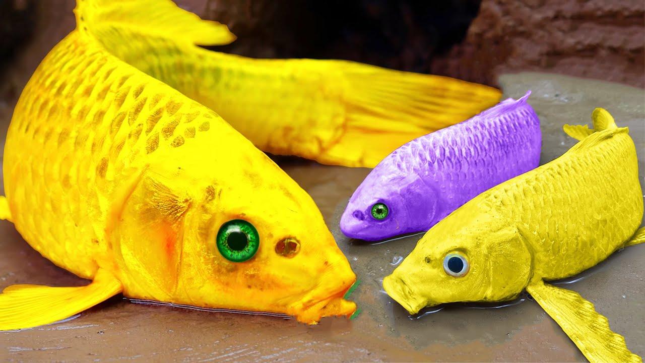 Download Yellow Fish Stop Motion Cooking ASMR - Mukbang Catfish, KOI Colorful Funny Shorts Story in Mud!