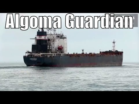 1987 Algoma Guardian - 730ft / 222m - Bulk Carrier Cargo Ship In Great Lakes May 21 2018
