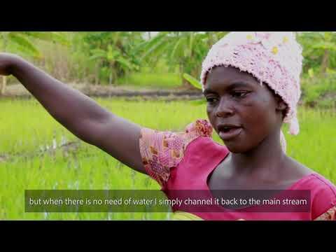 SWISSAID - Soil fertility management