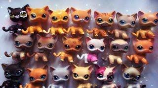 ЭКСКЛЮЗИВНАЯ РАСПАКОВКА lps Littlest Pet Shop | Hasbro стоячки,таксы,полу стоячки!!!
