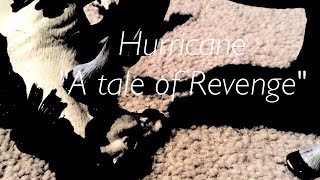 "Hurricane-Schleich horse music video ""A tale of revenge"""