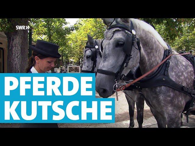 Kämpfen für die Pferde: Die Kutscherin von Baden-Baden