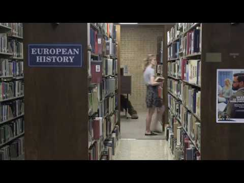 Crusader & Groundhog — Late-Night Library