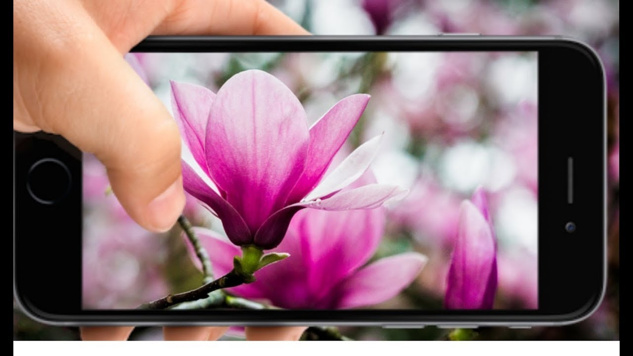 Cara Membuat Foto Bokeh Blur Menggunakan Kamera Hp Youtube