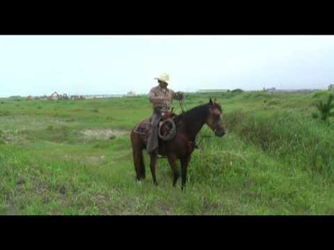Western Riding Cowboy 3 : Wisdom My Horse