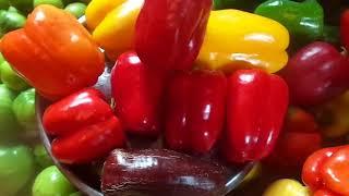 Проводим эксперимент : собираем семена из очень вкусных и урожайных гибридов болгарских перцев.
